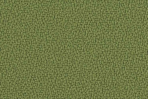 P560 - groen (Jambi XR420)