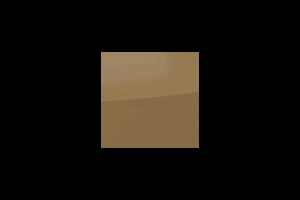 PS83  Chocolate : 01651