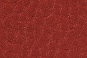 C832 - rood 'Sotega lachs'