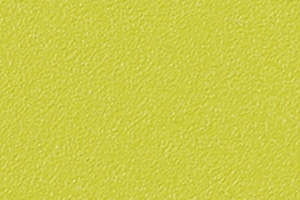 EP69 - Grün (RAL-design 100 70 60)