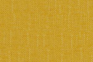 P710 - Gold