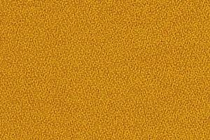 P511 - jaune (Timor XR418)