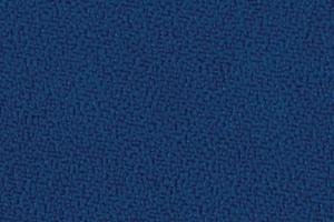 P555 - blauw (Makili XR424)