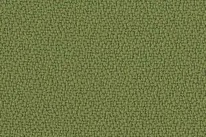 P560 - vert (Jambi XR420)